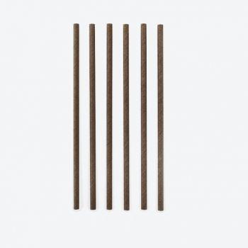 Point-Virgule set van 48 papieren rietjes zwart 19.5cm