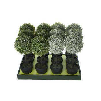 Cosy @ Home Buxus Set12 Groen Kunststof 15x15xh43