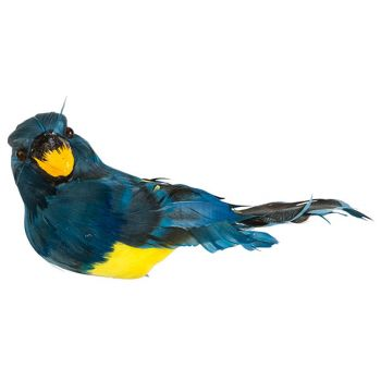 Cosy @ Home Papegaai Clip Blauw 18x9xh10cm Kunststof