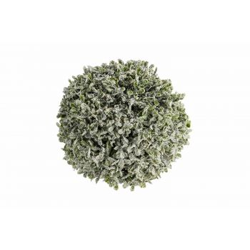 Cosy @ Home Bal Pe Buxus Snow Groen 18x18xh18cm Kuns